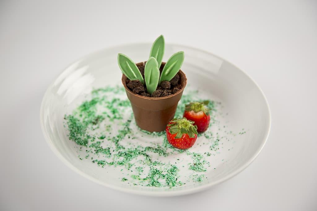 Receta de Maceta comestible con tierra de bizcocho y mousse de tiramisú